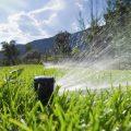 irrigation installation tampa