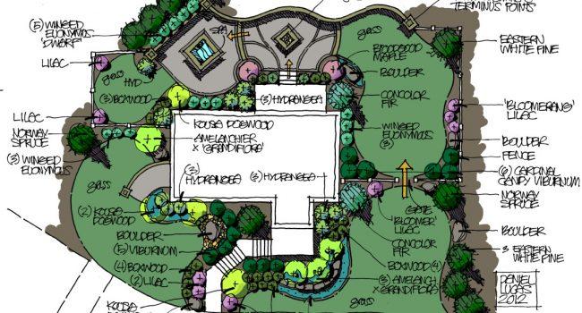 landscape design tampa florida